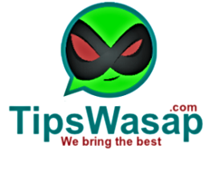 Compilation of the best secrets tricks for WhatsApp 2020, hide online, last time, be invisible…